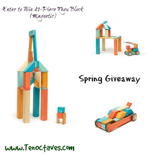 42 Piece Tegu Block Giveaway-US & Canada Only