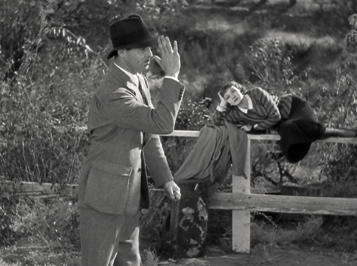 1001: A FILM ODYSSEY: IT HAPPENED ONE NIGHT (1934)
