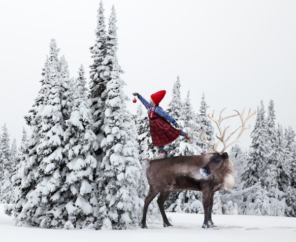 Winter Magic photos by Per Breiehagen