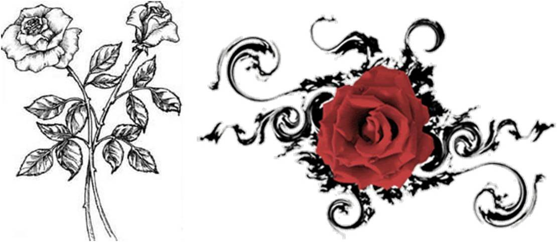 Another Simple Design Of Rose Tattoo