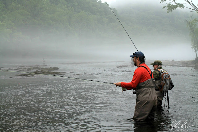Open to both wading and drifting in a boat, the Clinch River in Anderson County, TN is considered to be one of the best trout fisheries in the United States.