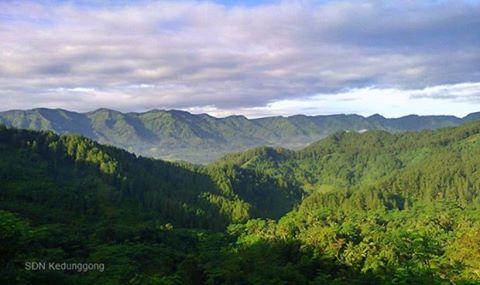 Kedunggong, Desa Terpencil Dengan Potensi Agro Wisata