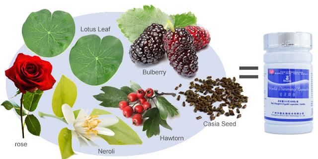 Obat Pelangsing Alami, Herbal, Murah dan Manjur