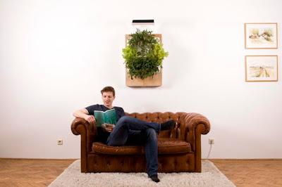 Herbert hydroponic vertical farm