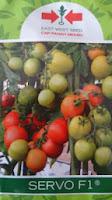 Benih,Servo, tomat, tahan virus,kuning, keriting, unggul, dataran rendah, tinggi, petani, Cap Panah Merah, Servo Harga Murah,