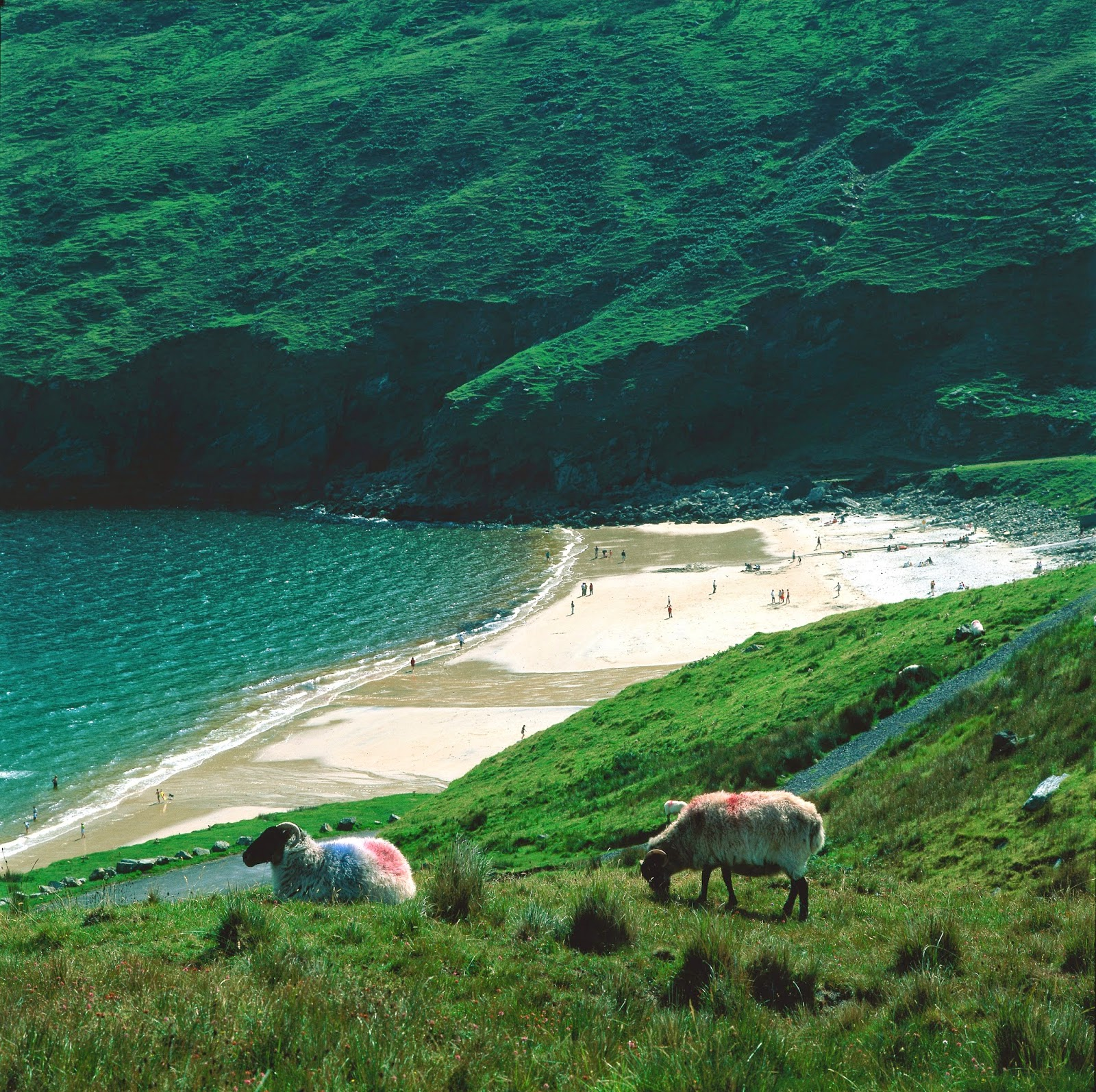Beach Island: Irish Eye Candy: Keem Beach, Achill Island