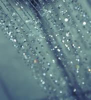 sparkle glitter drops