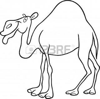 Μεγάλο αιδοίο καμήλα toe