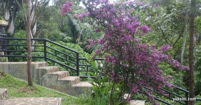 tangga di hutan kota bungkrit kuningan yang sudah dilengkapi tangga pengaman