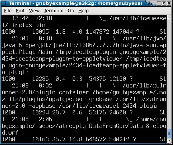 GnuByExample: java plugin and Linux - are webex  so security