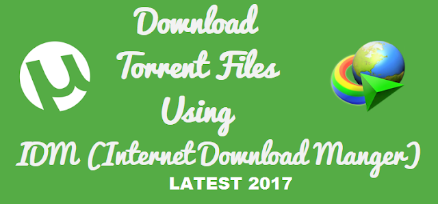 How To Download Torrent Files With IDM 2017 (10 Tricks) 1