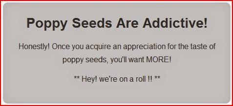 Poppy Seeds Are Addictive gray box
