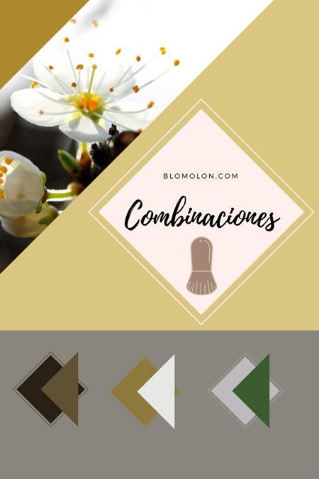 combinaciones_1_mes_de_agosto