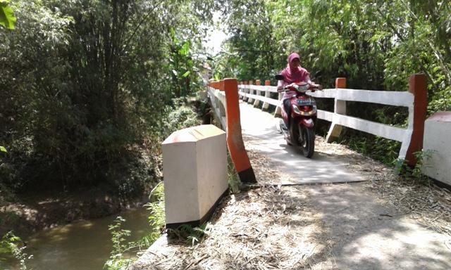 Rawan Banjing dan Longsor, Desa Meteseh Usulkan Talut Sungai Randugunting