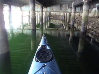 Reflected dock falsely suggests underwater structure, Seattle, Nigel Foster