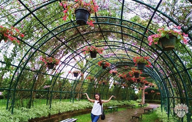 Lorong Cinta di Taman Bunga Nusantara