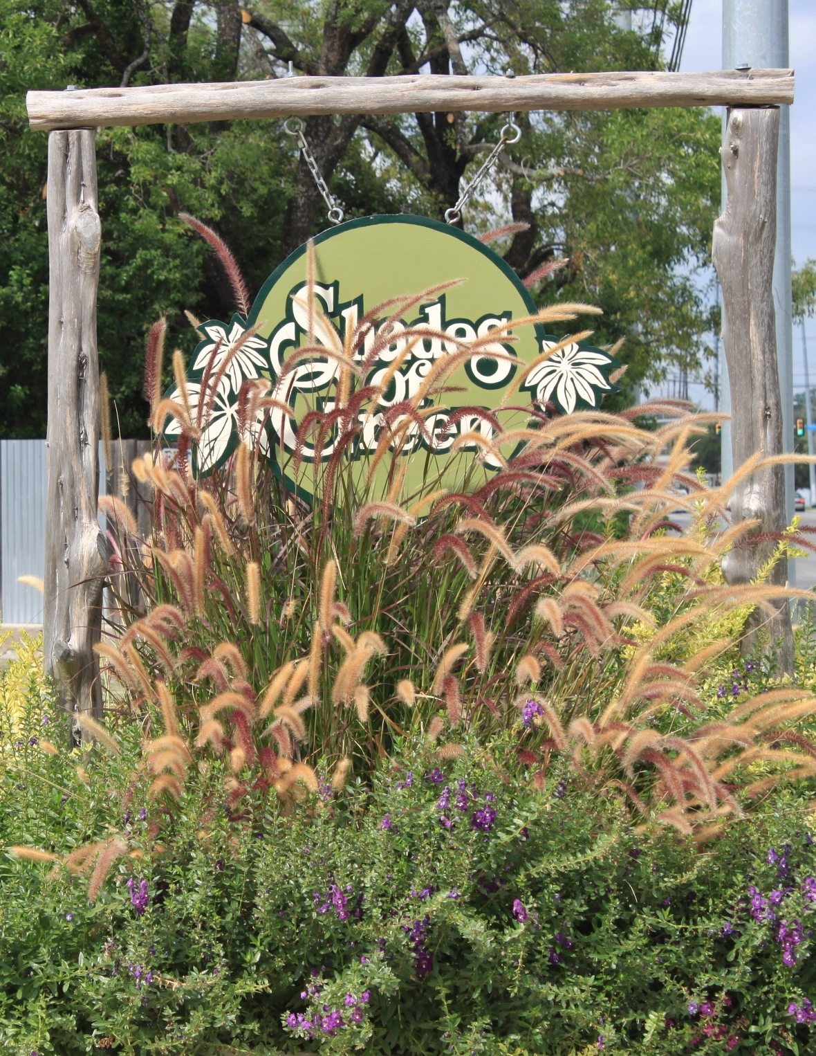 Our First Stop This Year Is Shades Of Green A Beautiful Nursery Northeast Downtown Near The Upscale Quarry Ping Area In San Antonio