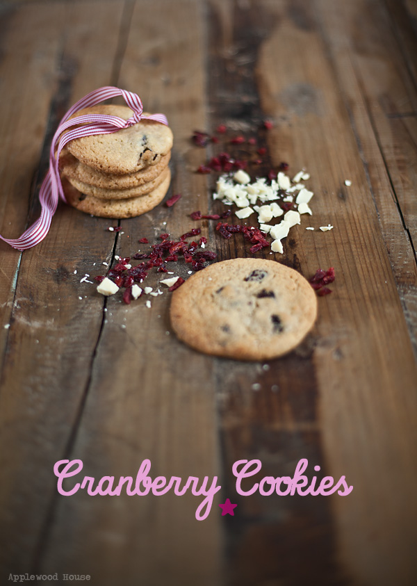 Cranberry Cookies weisse Schokolade backen baking christmas