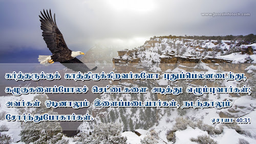 Bible wallpaper Isaiah 40:31 - Tamil