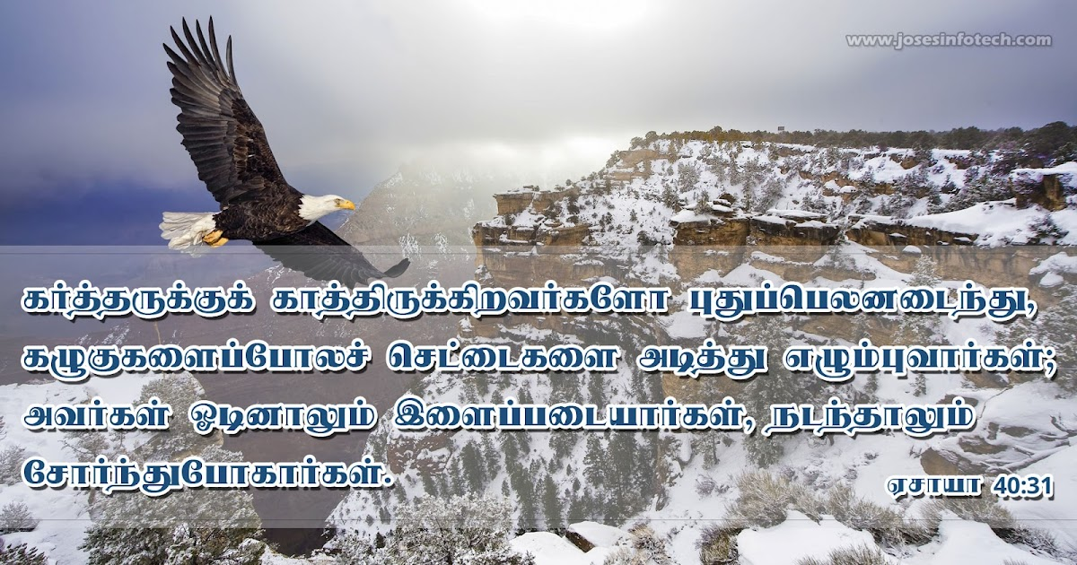 Arulvakku Tamil Bible - Apps on Google Play