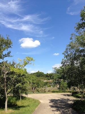 イメージ画像:緑の山中