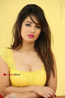 Cute Telugu Actress Shunaya Solanki High Definition Spicy Pos in Yellow Top and Skirt  0527.JPG