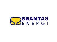 PT Brantas Energi - Recruitment For Accounting Staff Brantas Abipraya Group May 2019