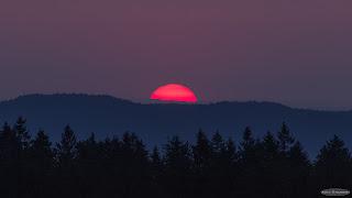 Pink Solar Disk