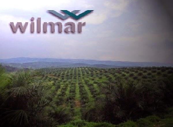 wilmar palm oil