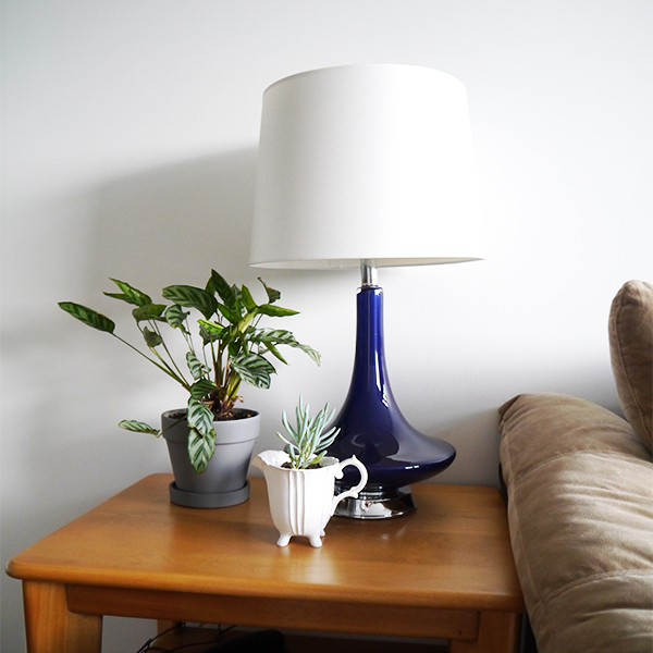 Calathea and succulent on side table