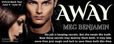 The Devil in the Details, Guest post by Meg Benjamin