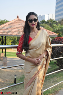 Angana Roy in Silk Saree at Teaching Tree Carnival .xyz 023.JPG