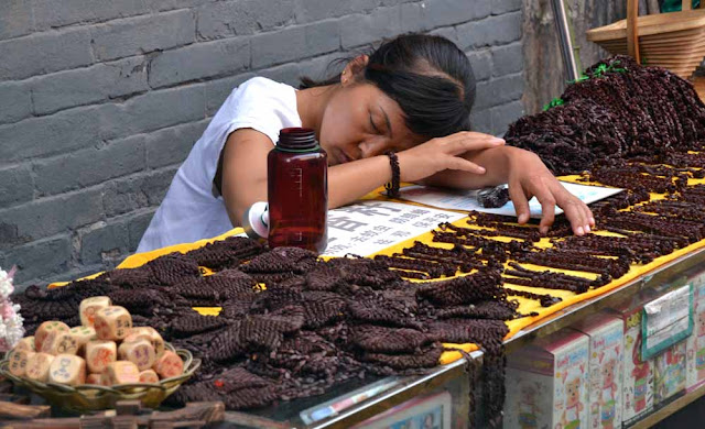 China durmiendo en la calle
