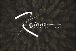 Photography Fotoğrafçı logo tasarımı imza kestane foto
