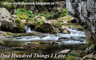 100 Things I Love