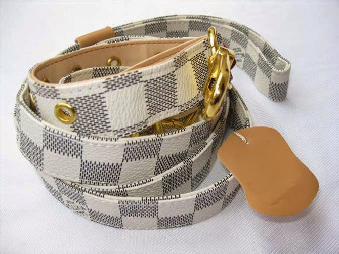 designer dog collars - photo #49