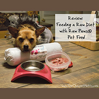 Raw Paws Pet Food review