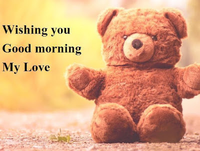 good morning teddy bear images for whatsapp - brown colour teddy bear