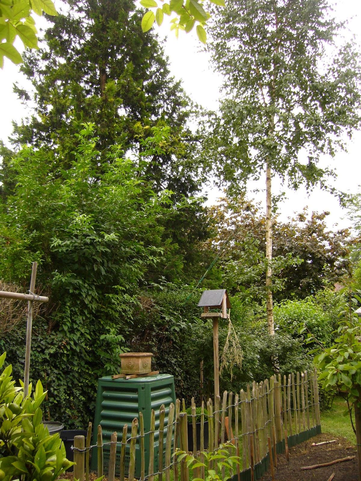 Jardin potager comestible partager un jardin de ville for B b un jardin en ville brussels