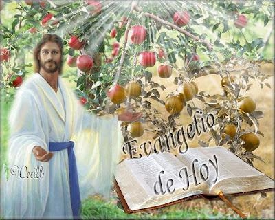 Resultado de imagen para Lucas 6,43-49