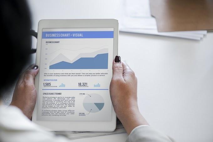 Ergebnisse der Investorenumfrage - Crowdinvesting und P2P
