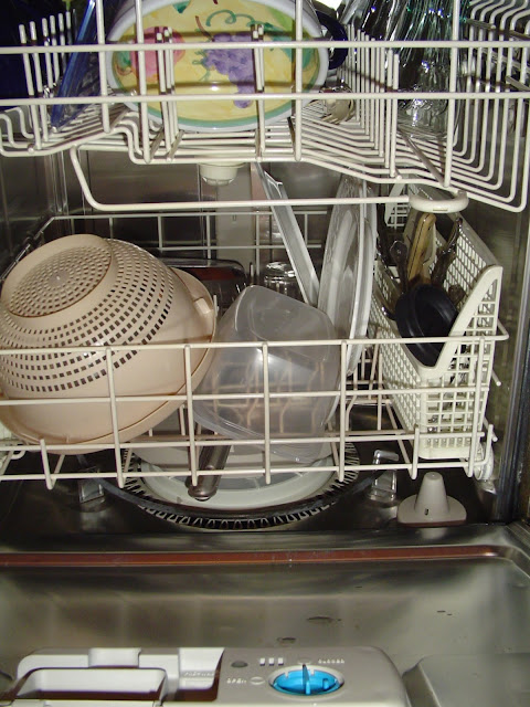 12/4/12 TGS LIVE! The Great Dishwasher Quest!