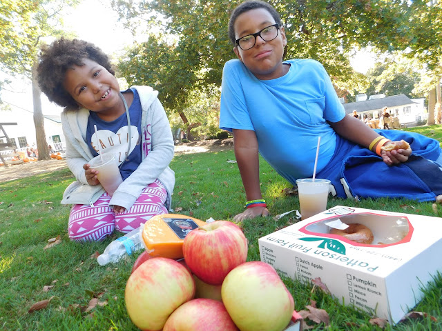 Apple picking at Patterson's Fruit Farm