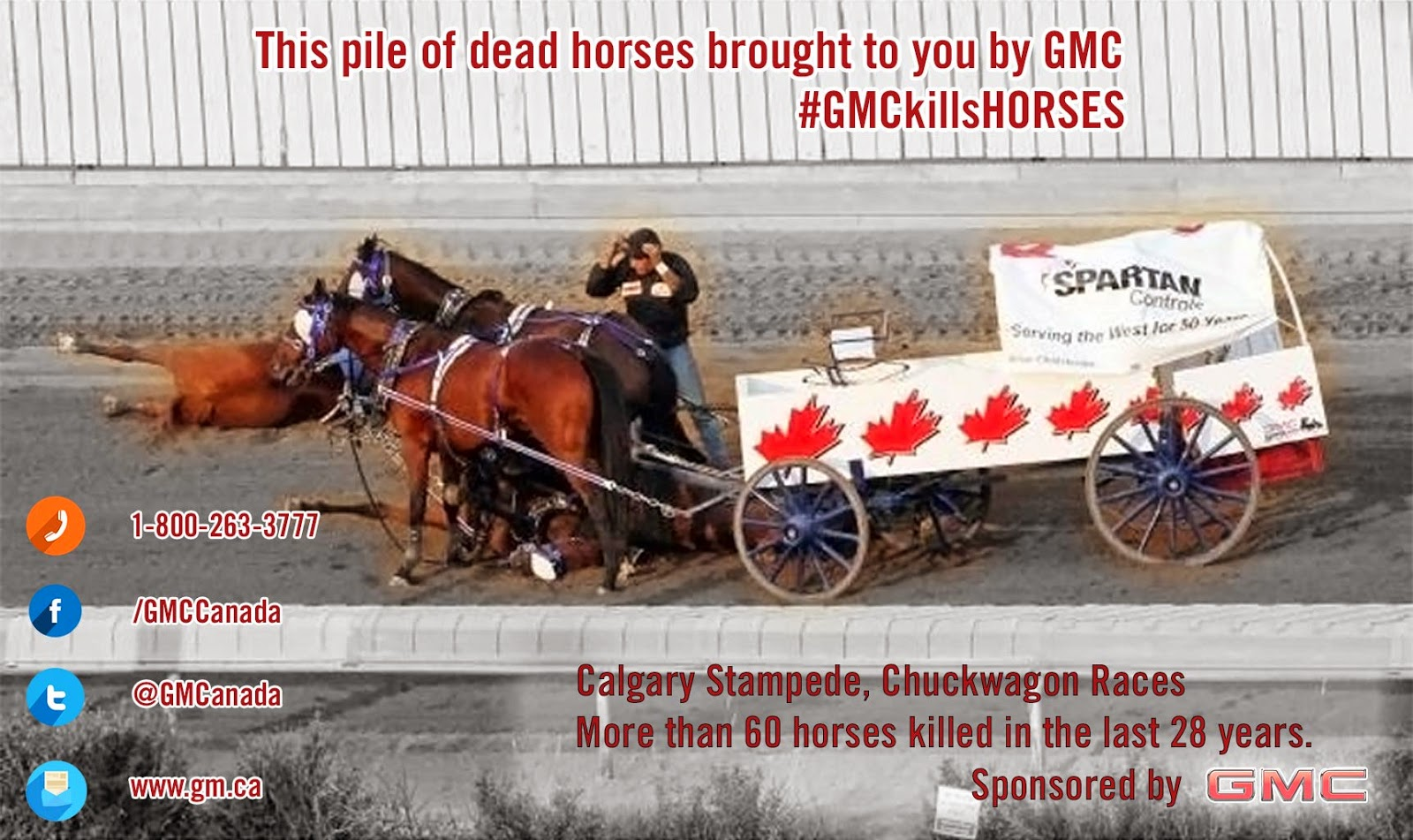 Stampede Lockdown At Calgary Chuckwagon Races Earth