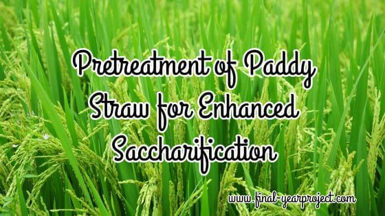Pretreatment of Paddy Straw for Enhanced Saccharification