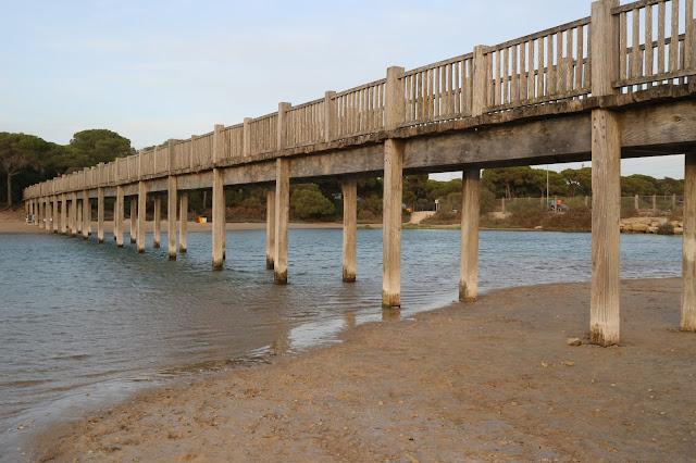 Puente de madera playa Río San Pedro