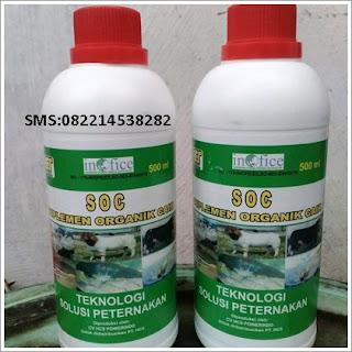 https://caramudahmembuatpakanfermentasiternak.blogspot.com/2018/11/obat-alami-untuk-fermentasi-pakan-ternak.html