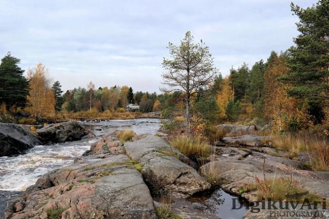 Hourunkoski,Pyhäjoki, syksy,ruska
