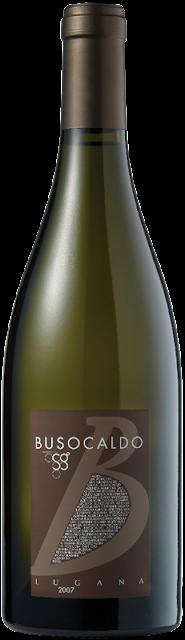 grafica branding comunicazione wine