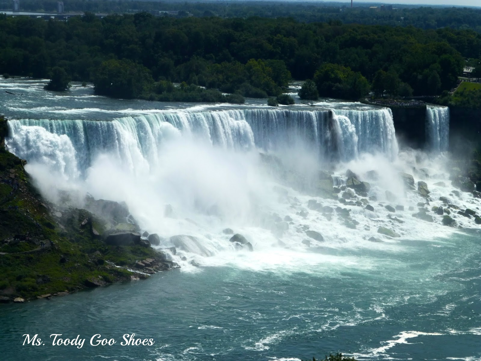 Niagara Falls - A Road Trip    by Ms. Toody Goo Shoes